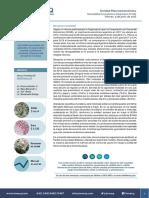 Newsletter Económico Financiero N°225