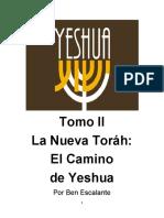 02 La nueva Torah.pdf