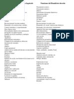 6. Funciones Del Hemisferio Derecho-Izquierdo_UT_Chetumal