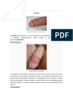 Balanitis y Uretritis