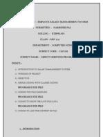 Sallary Management System