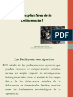 4. TEORÍAS EXPLICATIVAS I