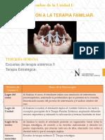 Terapia Estrategica (1)