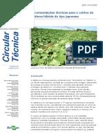 Recomendações técnicas para o cultivo de abóbora híbrida do tipo japonesa