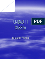 Copia de UNIDAD I Icraneo (1)