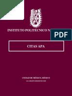 IPN Cita APA.