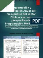 Sistema Nacional de Presupuesto Publico (Finanzas Publicas)