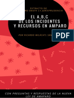 ABC RECURSOS E INCIDENTES.pdf