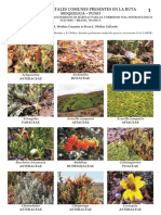 catalogofloramoquegua-punotramo5labor-1-140423090411-phpapp01.pdf