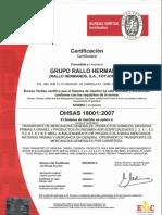 10_Grupo Rallo 18001 Valida Hasta Febrero 2015