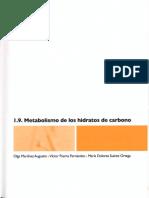 Metdeglucosa (Recuperado 1) (Recuperado)