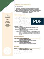 Curriculum Vitae Modelo 3b Arena