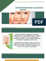 Cambios Dermatologicos Equipo 19 (2)
