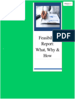6.Feasibility Report What, Why & How