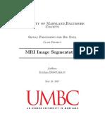MRI image segmentation