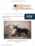 Dogs of War_ 23 Facts You Never Knew About Military Working Dogs