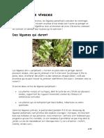 les-lgumes-vivaces.pdf