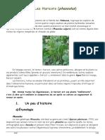 les-haricots.pdf