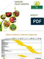 Catalogue Abricot