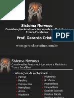 Consideracoes Anatomoclinicas Medula TE