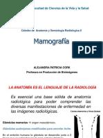7._Mamografia