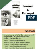Slide PSI 103 Psikologi Umum II Sensasi Dan Persepsi