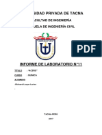 11.- informe de Quinmica n°01