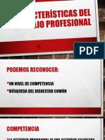 Características Del Trabajo Profesional
