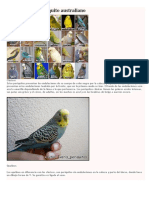Variedades de periquito australiano.docx