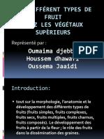 Les différent types de fruit (1).pptx