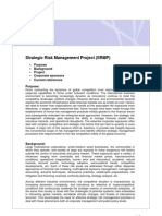 Strategic Risk Management Project (SRMP)