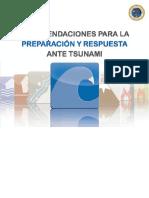 Manual Tsunami 2014