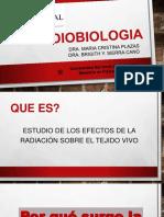Radiobilogia 1