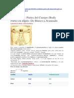 SILA-Vocabulario Partes Del Cuerpo (Body Parts) en Inglés–de Básico a Avanzado