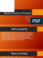 Reinos Eucaria y Protista