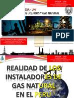 06 Nov 2017 Ipega Concytec PDF