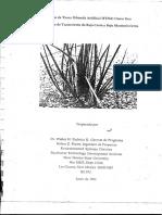 Filtros de Tierra Humeda Artificial FTHA (2)