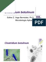clostridium-botulinum.pdf