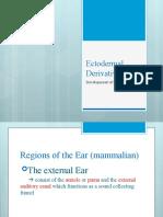 4 Development of the Ear