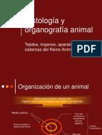 Histologia y Organografia Animal 1