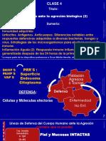 Clase 4 _ Inmunología 2