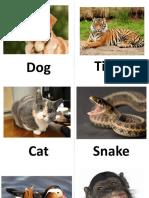 Animales Flashcards.pptx