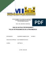 POLOS PETROQUIMICOS.docx