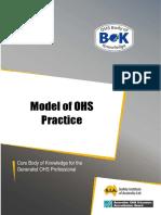 38 Practice Model of Practice