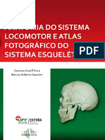 Anatomia do Sistema Locomotor.pdf