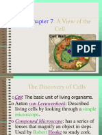 combined powerpoints on cells 2017
