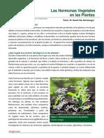 88. Las Hormonas Vegetales en Las Plantas