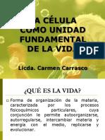 Teoria Celular Carmen (1)