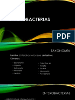 Entero Bacterias
