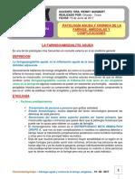 Patologia Aguda y Cronica de La Faringe 19-06-17
